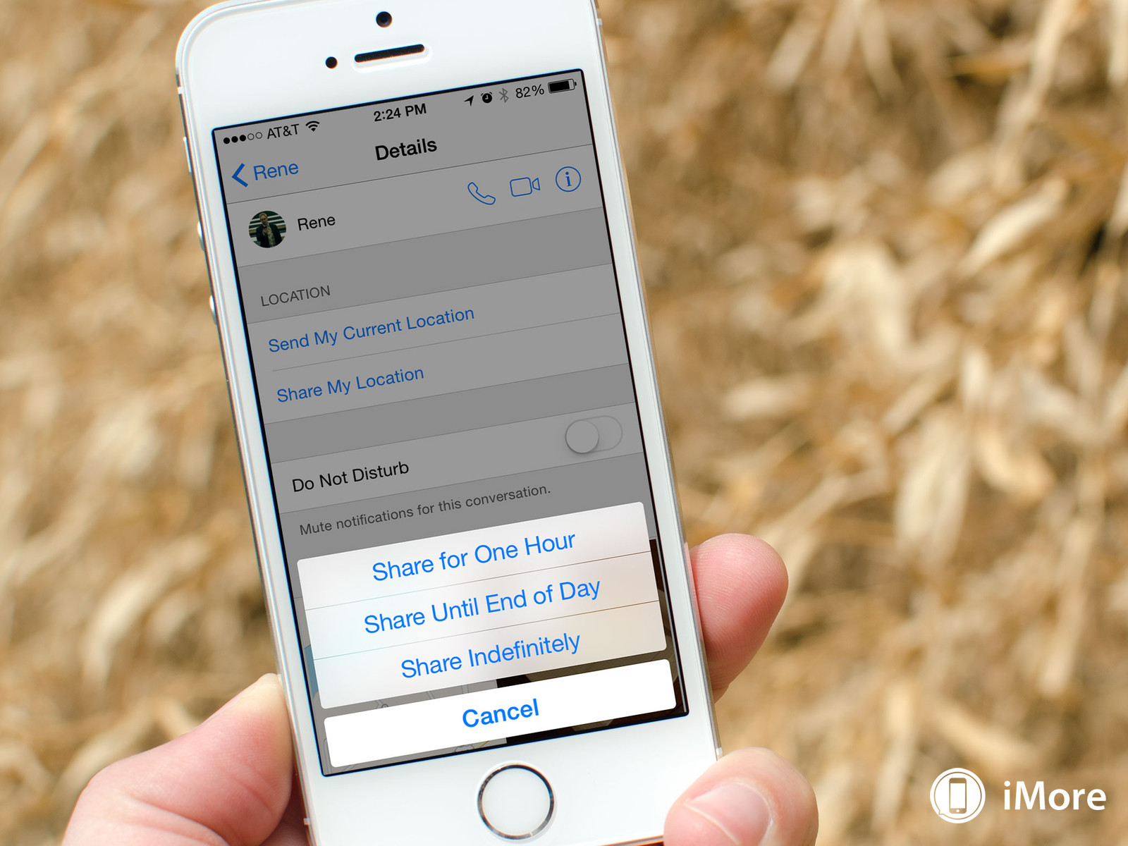 How to share your location with iMessage and iOS 8