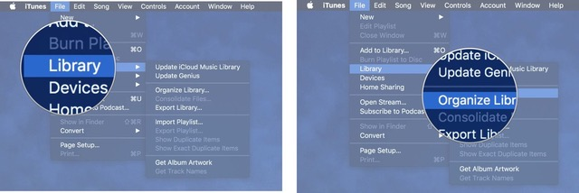 Select Library, then select Organize Library